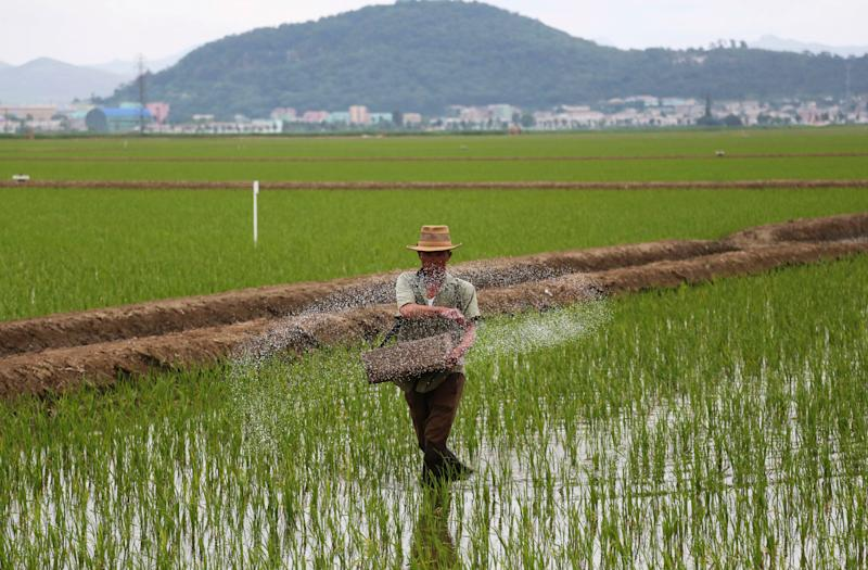 Ten million North Koreans in 'dire need' of food after worst