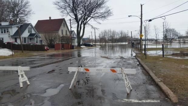 Charlottetown has 'picked up the ball', says Feltmate, when it comes to helping homeowners prevent basement flooding.