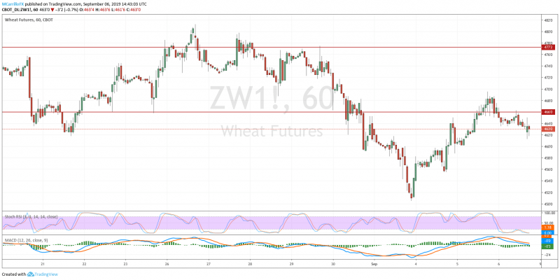 Negative Week for Grain Prices Due to Weather and Optimism