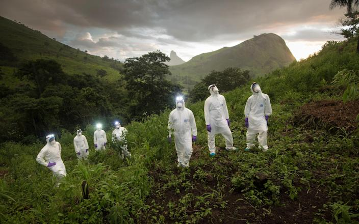 Scientists in Sierra Leone in August 2018 hunt for new pathogens in the wild animal population - Simon Townsley