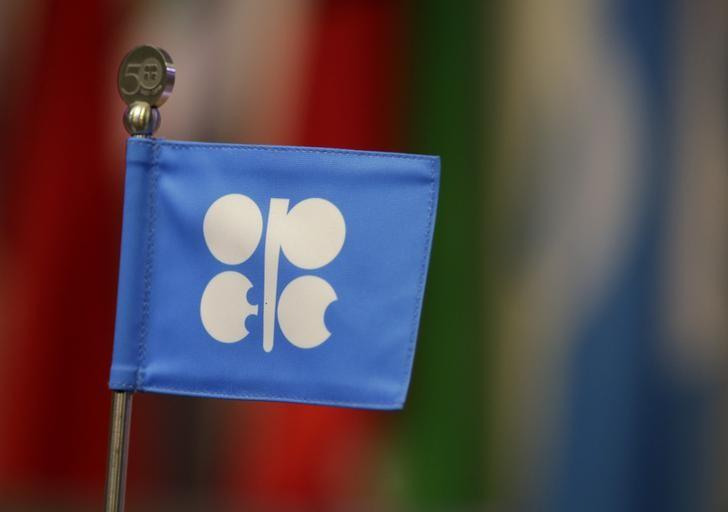 A OPEC flag is seen during the presentation of OPEC's 2013 World Oil Outlook in Vienna
