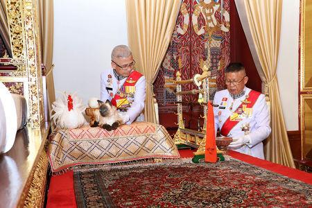 Thai Royal Ceremony Uses Fake Cat