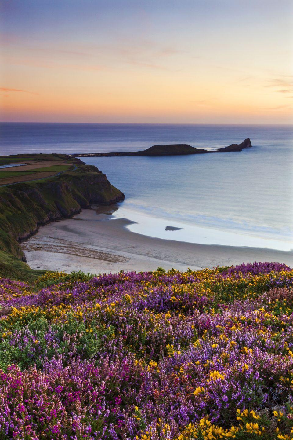 <p>The UK has some gorgeous beaches—even if the weather isn't ideal for sunbathing. Rhossili Bay on the tip of Gower Peninsula in Swansea is particularly pretty–just look at those blooms.</p>