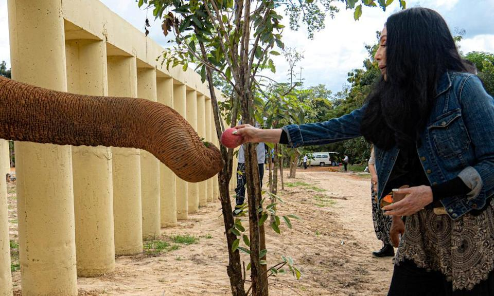 Cher with Kaavan at a sanctuary in Oddar Meanchey in Cambodia in December.