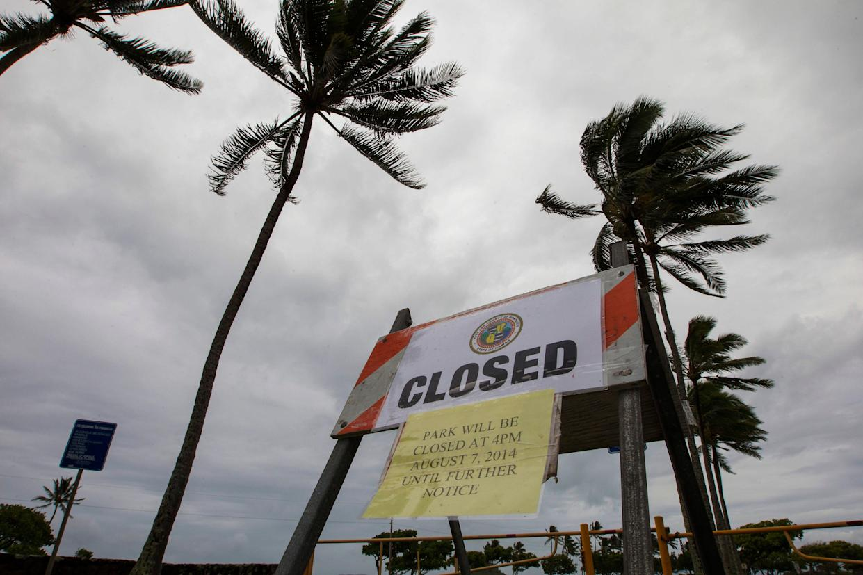 In this Aug. 8, 2014 file photo, winds from Tropical Storm Iselle blow palm trees near a sign warning of the closure of Kualoa Regional Park in Honolulu.