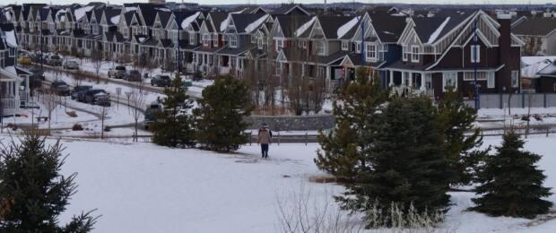 A green area near Summerside residences remains undeveloped.  (Kory Siegers/CBC - image credit)