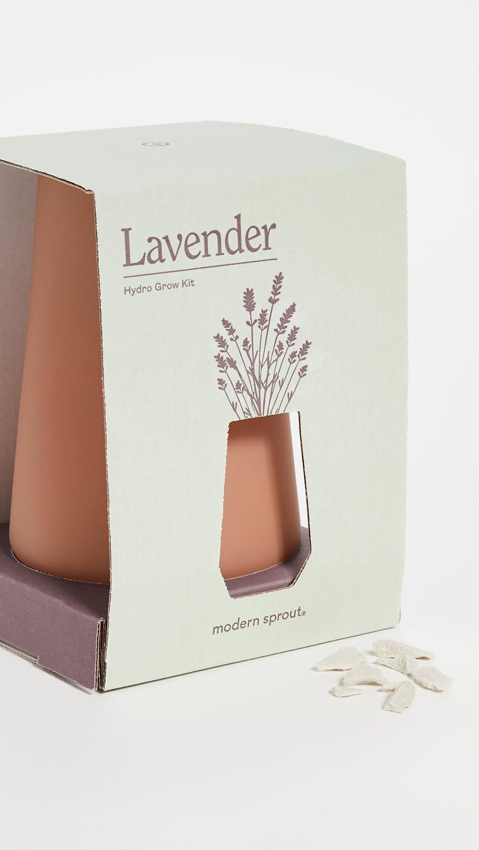 <p>If they love plants, this <span>Shopbop @Home Tapered Tumbler Grow Kit</span> ($25) is an awesome gift.</p>