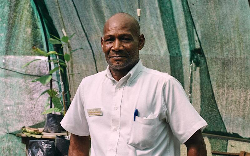 Cuthbert Monroque, the nursery supervisor at the Rabot Estate, on St Lucia - Credit: Ben Quinton