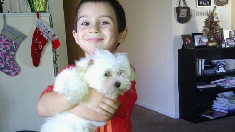 Search on for Missing Puppy After Grinches Burglarize Tampa Home