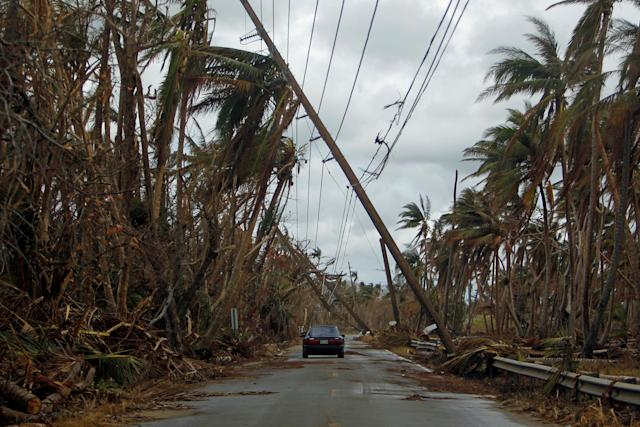 A car drives under tilted power line poles in Humacao, Puerto Rico, in the aftermath of Hurricane Maria.