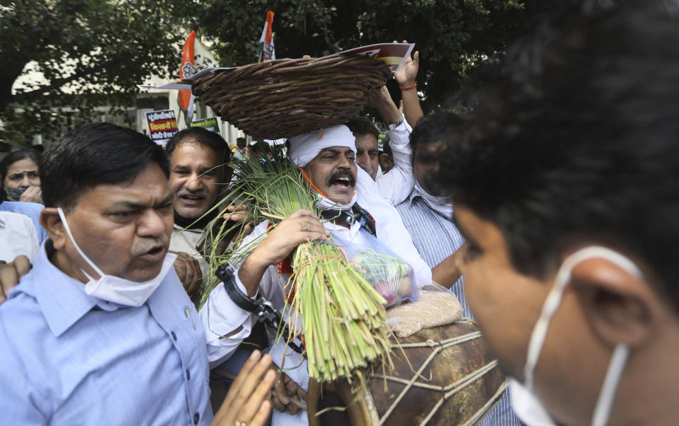 Members of India's opposition Congress party shout anti government slogans during a protest against farm bills in New Delhi, India, Monday, Sept. 21, 2020. Amid an uproar in Parliament, Indian lawmakers on Sunday approved a pair of controversial agriculture bills that the government says will boost growth in the farming sector through private investments. (AP Photo/Manish Swarup)