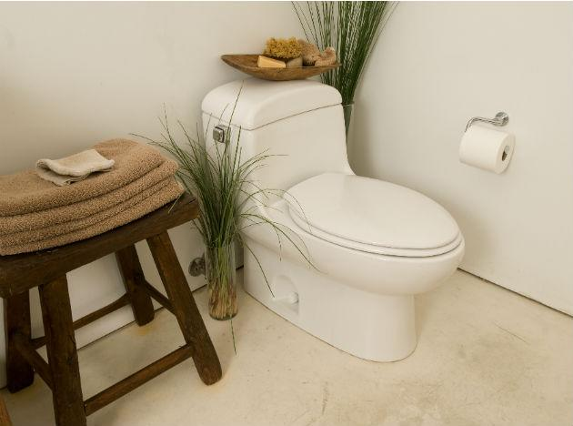 <b>Peeing on the toilet seat </b><br><br>It could be the middle of the night or broad daylight, they could be groggy or wide awake, they will still do it. It's not rocket science to aim right inside and pee into the big bowl. Puddles of urine on the toilet seat and around the base of the toilet are not just unhygienic, but downright dirty!