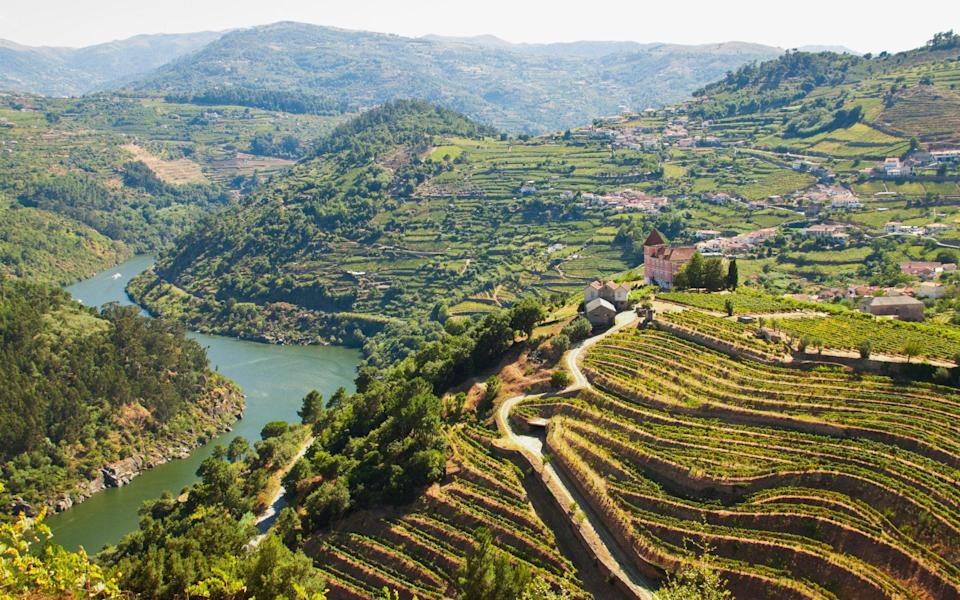 The river Douro and vineyards - Light-Lab/Getty