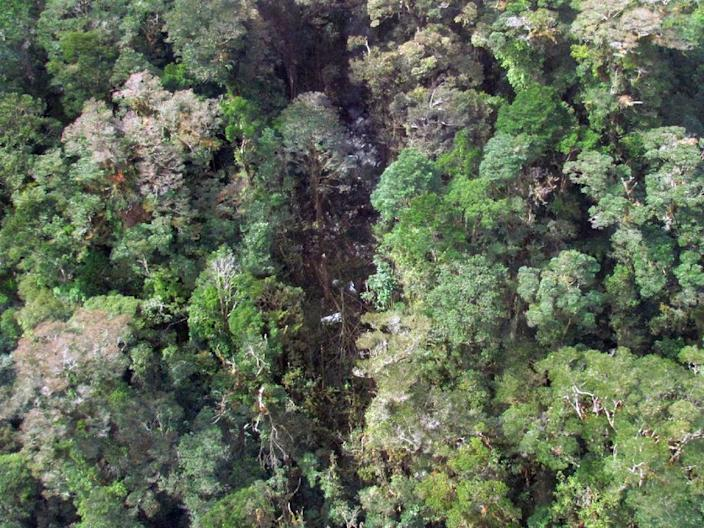 The wreckage from a Trigana Air ATR 42-300 twin-turboprop scattered among trees in the mountainous area of Oksibil district, in Indonesia's Papua province (AFP Photo/Basarnas)