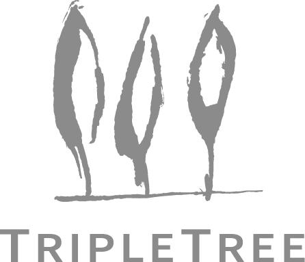 2020 TripleTree iAwards – Call for Applications