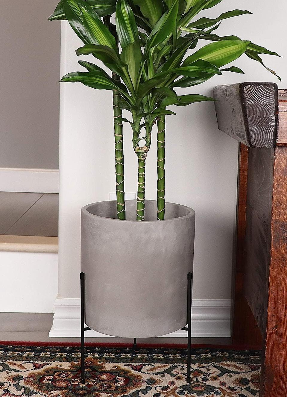 <p>For a clean and modern look, go for this <span>Finehous Cement Planter with Stand</span> ($70, originally $90).</p>