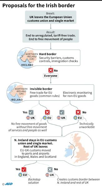 Flow chart showing suggested options for resolving the problem of the Irish border after Brexit, when it will become the only land frontier between the UK and the EU