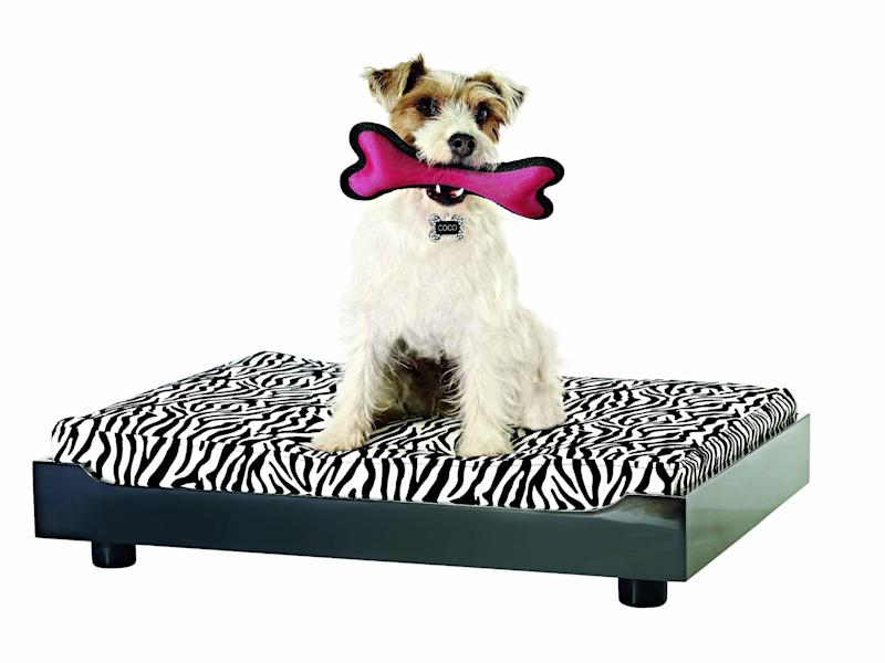 This product publicity photo provided by HomeGoods, Inc. shows a squeaky rubber dog bone. Interactive toys that squeak when held are entertaining for dogs. The key is to rotate the selection; like children, pets get bored when the same toys are always out. Taking away and reintroducing toys keeps dogs and cats engaged (www.homegoods.com). (AP Photo/HomeGoods, Inc.)