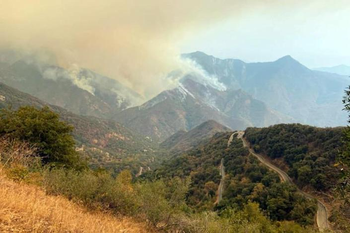 A smoke plumes rise from the Paradise Fire in Sequoia National Park, Calif.