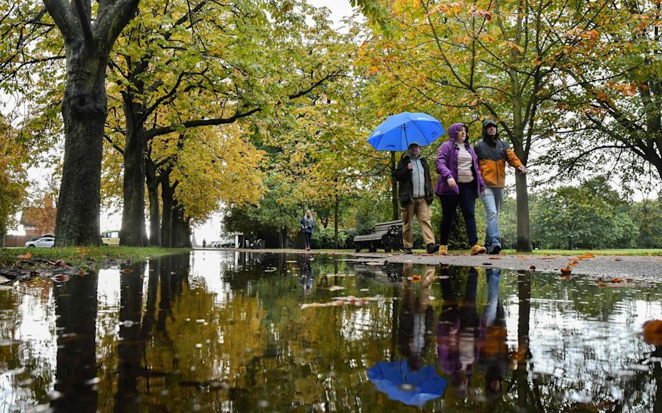 People walk under trees reflected in a puddle after rainfall in Greenwich Park, south-east London - Justin Tallis/AFP