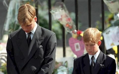 'You didn't even know her': Prince William on his confusion over public grief for Diana