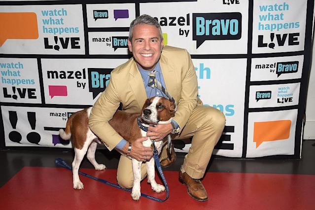 Andy Cohen hangs out with Wacha. (Photo: Charles Sykes/Bravo/NBCU Photo Bank)