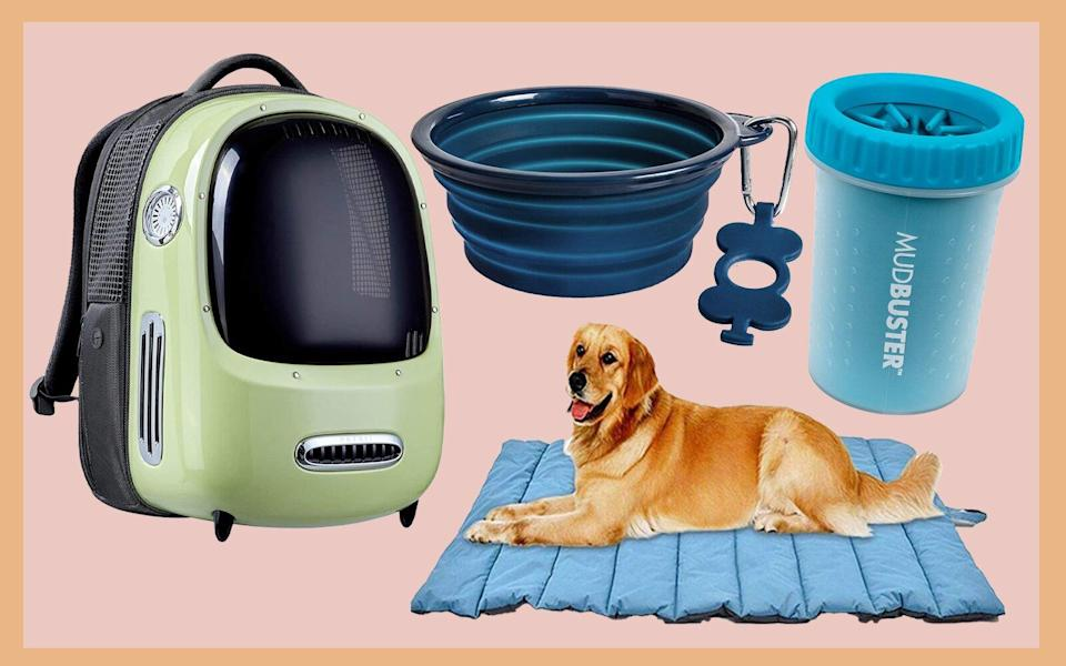 Amazon Pet Must-Haves 2021