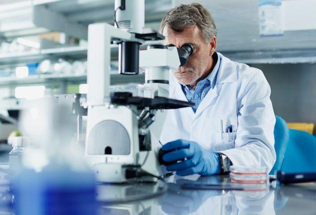 Scientist looking through microscope in research laboratory (Photo: Morsa Images via Getty Images)