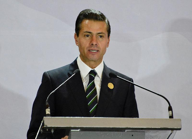 Mexican President Enrique Pena Nieto told a summit in San Jose he would keep the countries represented informed of aspects of its talks with the US that would affect them (AFP Photo/EZEQUIEL BECERRA)