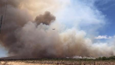 Plane flies through a plume of smoke from a wildfire on the island of Maui, Hawaii