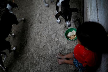 A girl eats lunch at a house in San Antonio Secortez, home village of Jakelin Caal, a 7-year-old girl who died after being detained by U.S. border agents, in San Antonio Secortez, Guatemala December 23, 2018. Picture taken on December 23, 2018. REUTERS/Carlos Barria