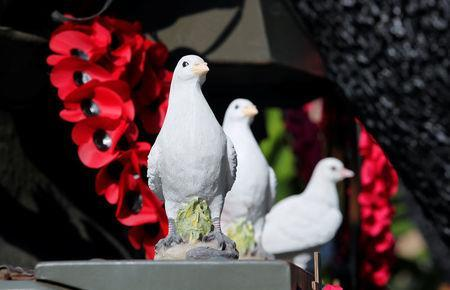 """Peace doves are pictured atop of a demilitarised Centurion tank previously owned by the Swiss army at the British curiosities collection called """"Little Britain"""" of Gary Blackburn, a 53-year-old tree surgeon from Lincolnshire, Britain, in Linz-Kretzhaus, south of Germany's former capital Bonn, Germany, August 24, 2017. REUTERS/Wolfgang Rattay"""