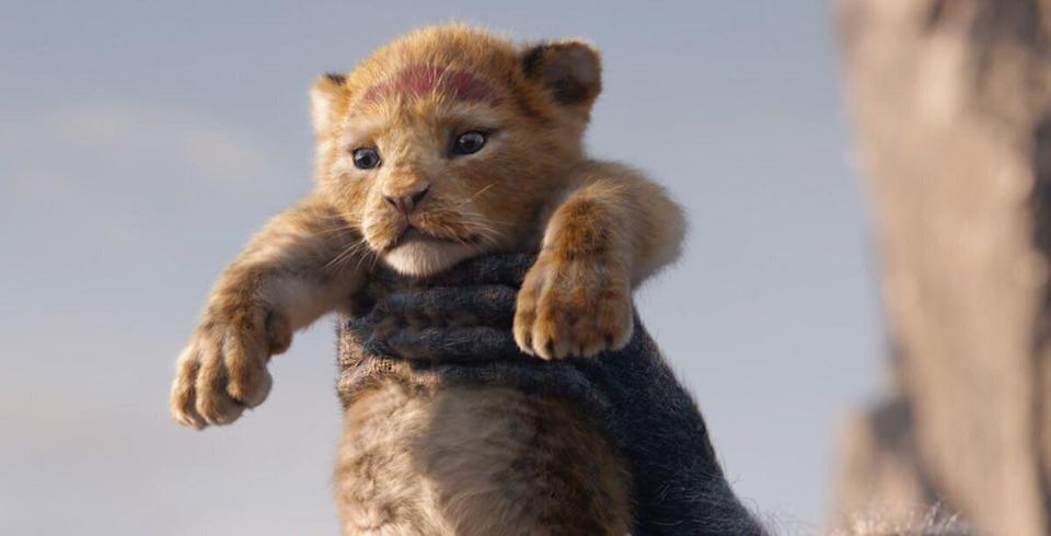 Even Simba doesn't want to look (credit: Disney)