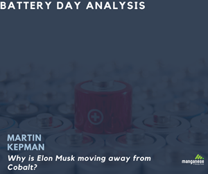 """""""In virtue of all these above mentioned developments, Manganese X Energy is a good choice for Tesla and other electric car manufacturers."""" Martin Kepman CEO."""