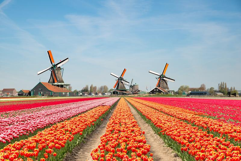 "The Dutch tourist board is to stop actively promoting the Netherlands as a tourist destination because of concerns that its cities and attractions are becoming overcrowded.The country's tourist numbers are anticipated to grow from 19 million now to 29 million over the next decade – and the country's authorities do not necessarily see that as an entirely good thing.""To control visitor flow and leverage the opportunities that tourism brings with it, we must act now,"" the country's tourist board said in a strategy document laying out its plan for the coming decade.""Instead of destination promotion, it is now time for destination management.""The tourist board also hopes to spread tourists out to less visited parts of the Netherlands, amid concerns that hordes of visitors are ruining the very attractions they are coming to see.The negative impact of mass tourism is in particular a major issue in Amsterdam, which has boomed significantly as a holiday destination in the last decade. Housing costs, public disorder and the character of neighbourhoods are all seen as concerns there.The number of tourists visiting the country's largest city has soared from 11 million in 2005 to 18 million in 2016. The city raised its tourist tax last year in a bid to control numbers and pay for the costs and externalities it creates. A further increase is planned this year.But even outside Amsterdam, tourism has brought with it many woes. The famous Keukenholf bulb garden and Kinderdijk windmill districts have become all but inaccessible during peak tourism season due to strains on local infrastructure created by visitors."