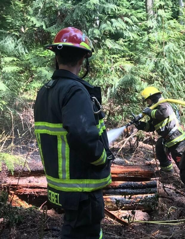Vancouver Fire Rescue Services extinguish a cigarette fire in Stanley Park on May 2, 2019.  (Vancouver Fire Rescue Services/Twitter - image credit)