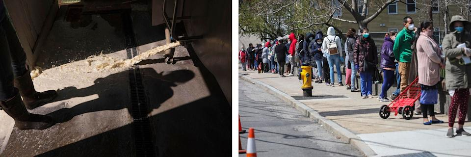 Left: A dairy farmer dumps excess milk at Plurenden Manor Farm in Ashford, U.K. The pandemic forced farmers around the world to dump produce they couldn't sell. Right: People line up for food donations in Waltham, Massachusetts, on April 11, 2020. The food bank has seen a surge in demand since the pandemic began. Credit: Getty Images (Photo: )