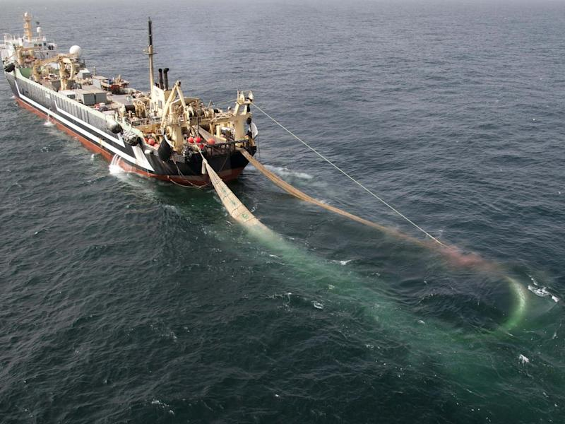 The world's second largest factory fishing trawler, the Lithuanian FV Margiris: PA