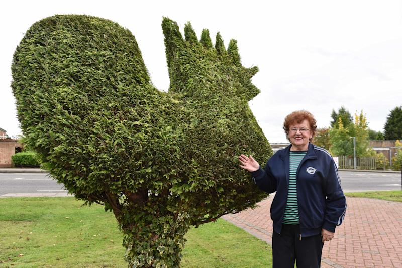 Joan Granahan shows off the huge cockerel in her garden (Picture: Caters)