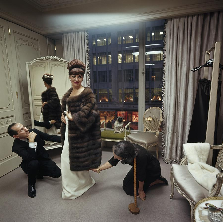 A woman shops for a fur coat at Bergdorf Goodman in New York City. Her Chinese pug, Miss Puffet, sits on a nearby chaise, December 1964.