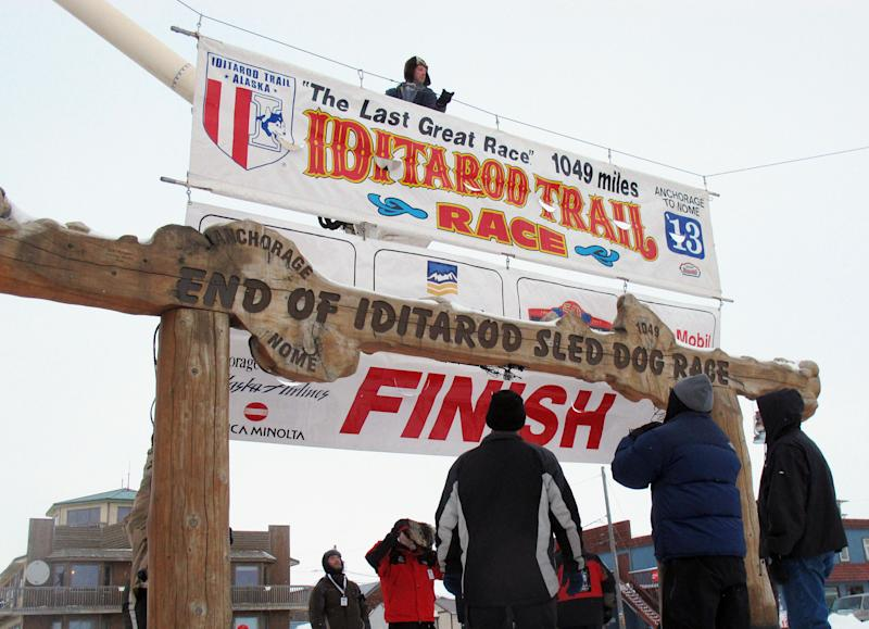 Volunteers hang a banner above the burled arch, which serves as the finish line for the 1,000-mile Iditarod Trail Sled Dog Race in Nome, Alaska, on Monday, March 11, 2013. The race began March 3 in Willow, Alaska, and some race watchers predict a Tuesday finish. (AP Photo/Mark Thiessen)