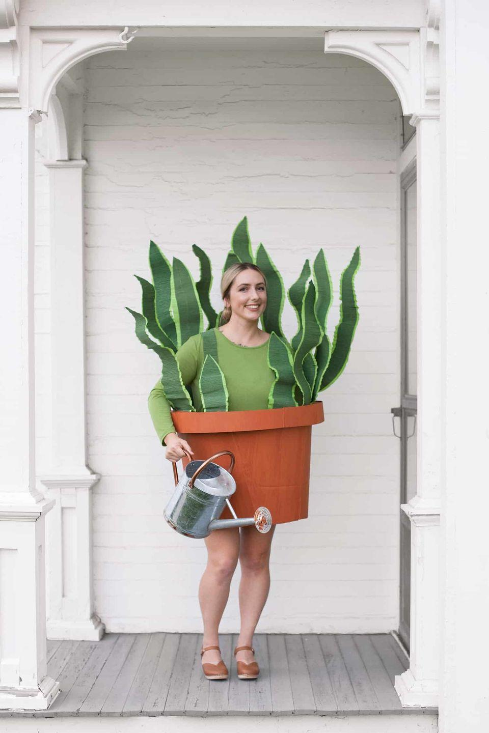 """<p>If you're a proud plant lady, opt for this creative costume. Bulky, a bit—but it's got real first prize potential. </p><p><a class=""""link rapid-noclick-resp"""" href=""""https://abeautifulmess.com/diy-houseplant-boxtume/"""" rel=""""nofollow noopener"""" target=""""_blank"""" data-ylk=""""slk:GET THE TUTORIAL"""">GET THE TUTORIAL</a></p><p><a class=""""link rapid-noclick-resp"""" href=""""https://www.amazon.com/Gildan-womens-Long-Sleeve-T-Shirt-GREEN-M/dp/B00BJM3WSK?tag=syn-yahoo-20&ascsubtag=%5Bartid%7C10072.g.33547559%5Bsrc%7Cyahoo-us"""" rel=""""nofollow noopener"""" target=""""_blank"""" data-ylk=""""slk:SHOP GREEN TEE"""">SHOP GREEN TEE</a></p>"""