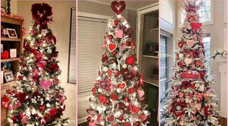 Netizens Upcycle Their Christmas Trees
