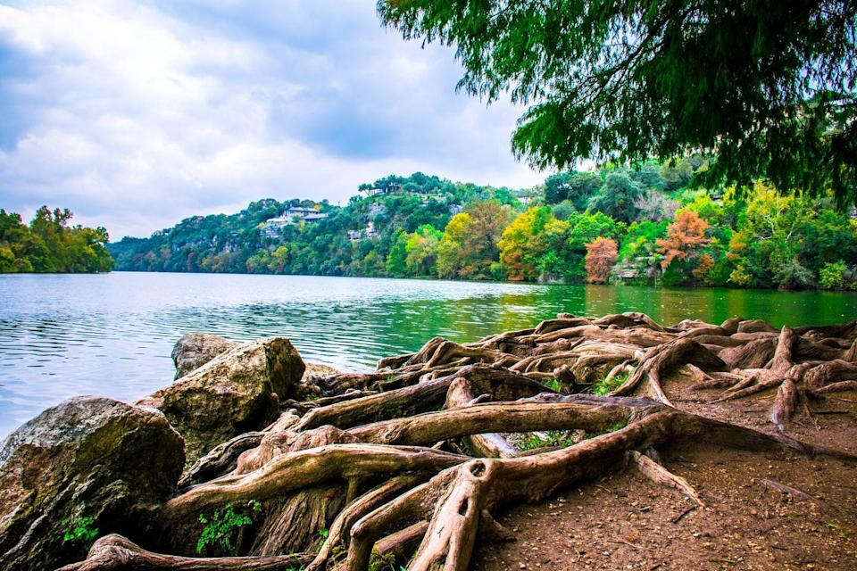 """<p>You can take your pup off the leash at this 13-acre dog park on Austin's Lady Bird Lake. Each fall, the island's trees turn brilliant shades of orange and yellow. You won't want to miss it!</p><p><a class=""""link rapid-noclick-resp"""" href=""""https://go.redirectingat.com?id=74968X1596630&url=https%3A%2F%2Fwww.tripadvisor.com%2FHotels-g30196-Austin_Texas-Hotels.html&sref=https%3A%2F%2Fwww.thepioneerwoman.com%2Fhome-lifestyle%2Fg36804013%2Fbest-places-to-see-fall-foliage%2F"""" rel=""""nofollow noopener"""" target=""""_blank"""" data-ylk=""""slk:FIND A HOTEL"""">FIND A HOTEL</a></p>"""