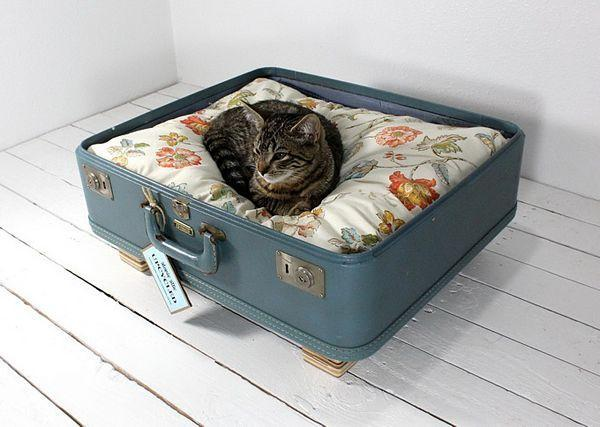 old suitcase fashioned in to a cat bed