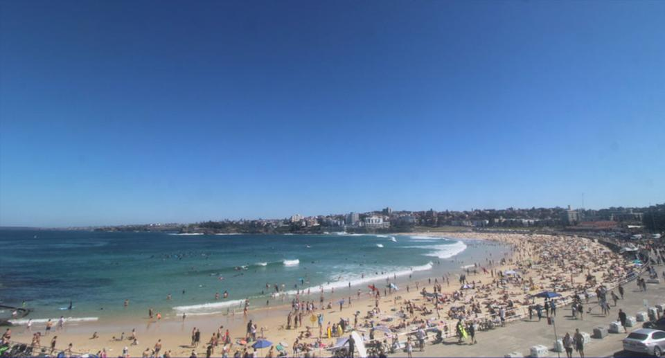 People flocked to Bondi Beach on Saturday after 1599 new Covid cases were announced. Source: North Bondi RSL