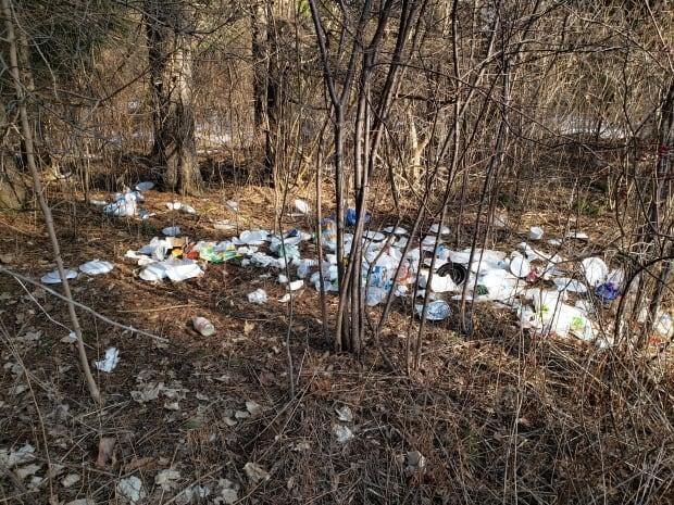 Provincial and national parks have seen a drastic spike in litter, illegal dumping, off-trail hiking, people feeding wildlife and vandalism, according to Parks Canada.  (Submitted by Parks Canada - image credit)
