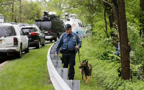 A K-9 unit searches near the scene of the crash - Credit: Seth Wenig/AP