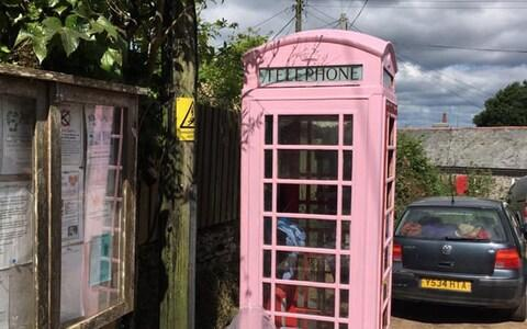 Jean-Luc's striking pink undercoat attracted attention from villagers - Credit: Telegraph