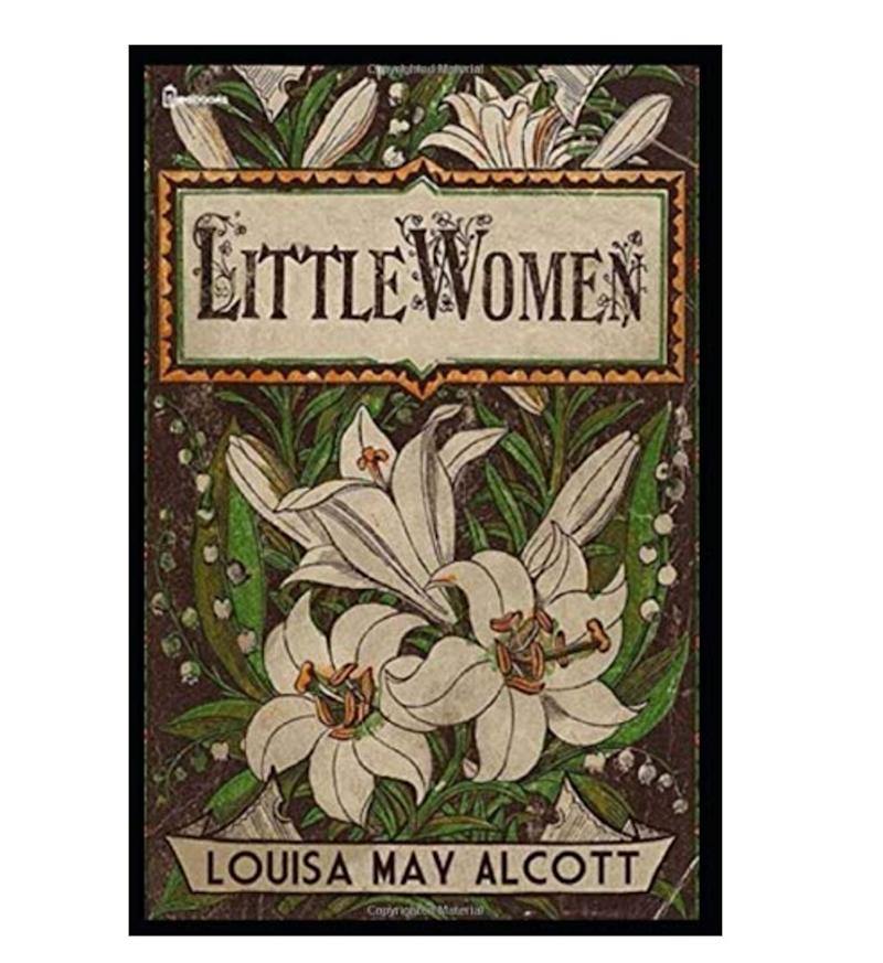 "For the fan of classic proto-feminist lit, and/or Greta Gerwig. Get it <a href=""https://www.amazon.ca/Little-Women-Louisa-May-Alcott/dp/1794025456/ref=sr_1_5?keywords=little+women&amp;qid=1581539193&amp;s=books&amp;sr=1-5"" target=""_blank"" rel=""noopener noreferrer"">on Amazon</a> for $17.93."